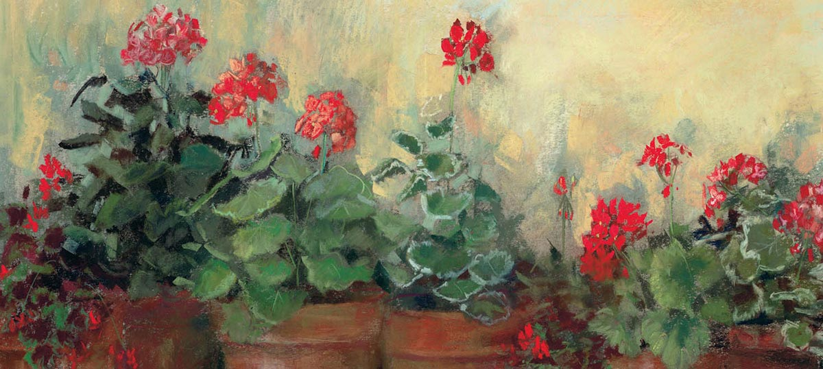 Geraniums Canvas Art Prints
