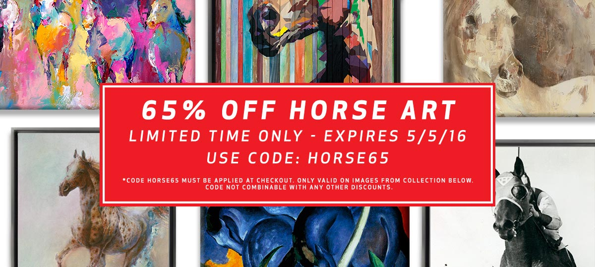 Horse Art Sale Canvas Art Prints