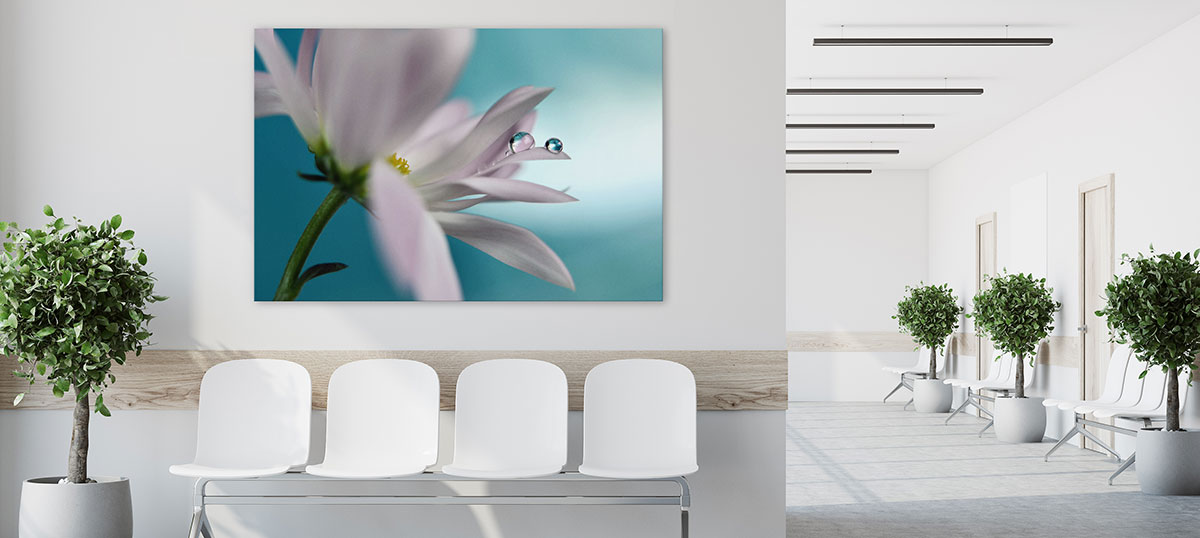 Medical & Dental Canvas Prints