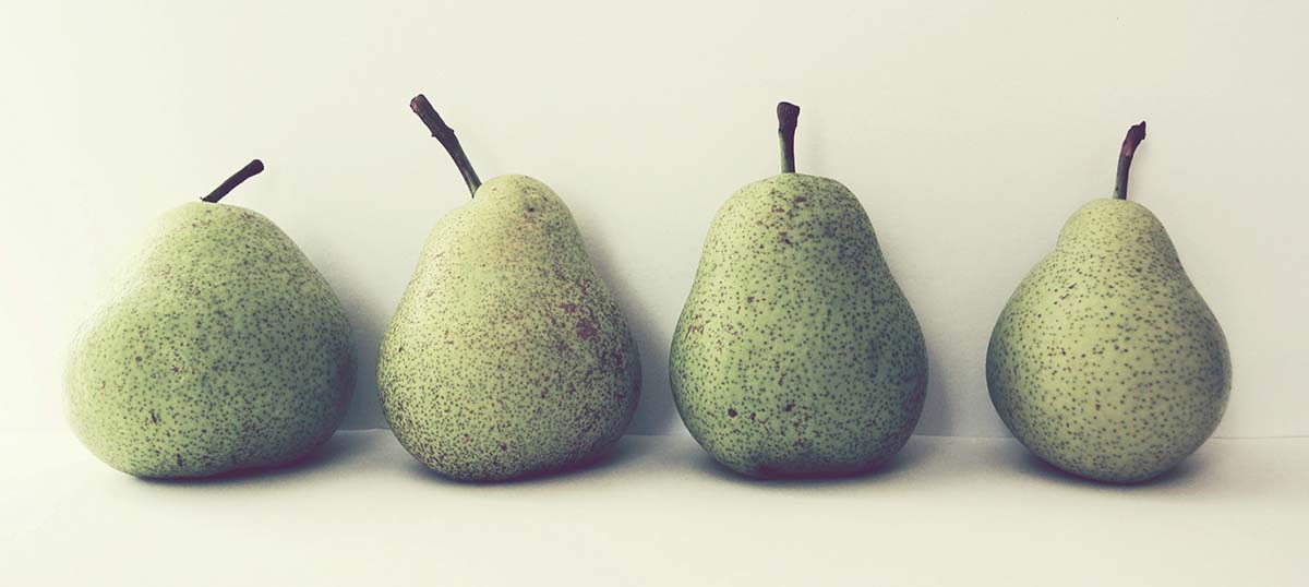 Pears Canvas Wall Art