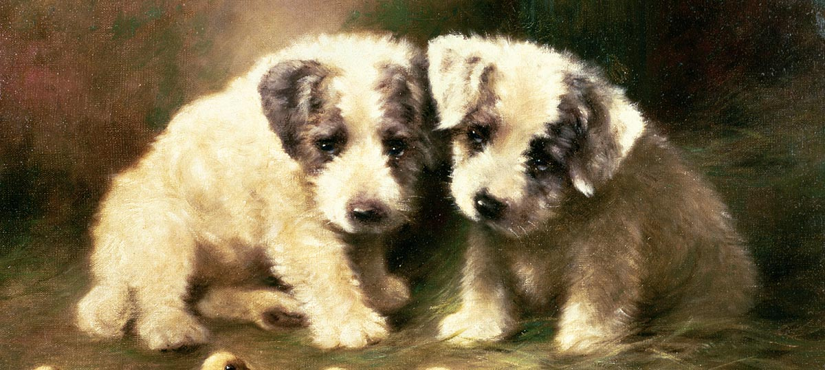 Puppies Canvas Art