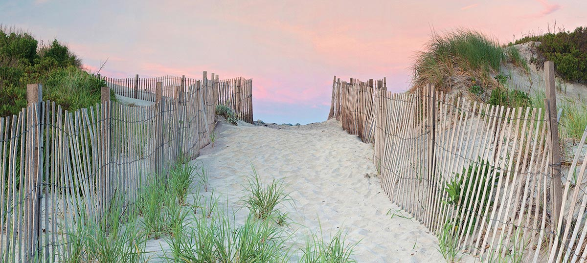 Coastal Sand Dunes Art Prints