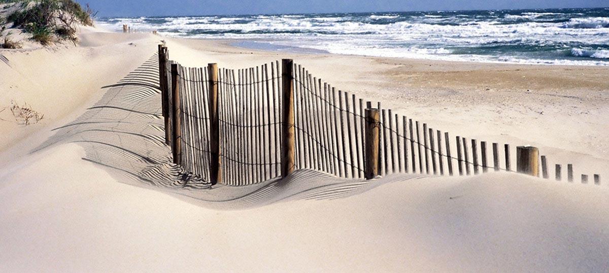 Sandy Beaches Canvas Art Icanvas
