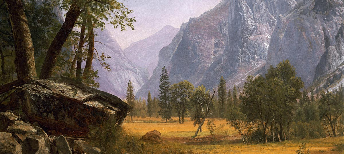 Yosemite National Park Art Prints