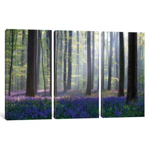 Best Selling Triptychs Canvas Artwork