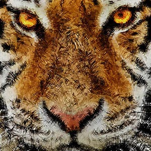 Animal Art Canvas Art