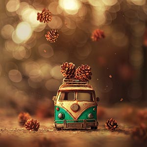 Ashraful Arefin Canvas Artwork