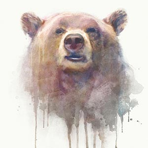 Bears Canvas Wall Art
