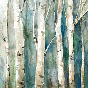 Birch Trees Canvas Prints