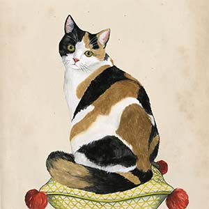Calicos Canvas Art Prints