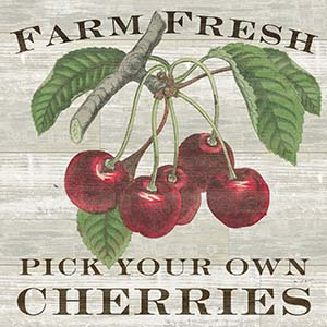 Cherries Canvas Art