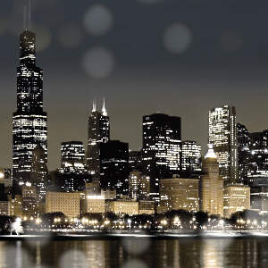 Chicago Skylines Canvas Wall Art