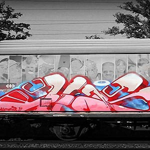 Color Splash Graffiti Canvas Prints