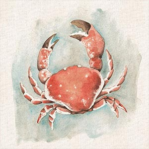 Crabs Canvas Art Prints