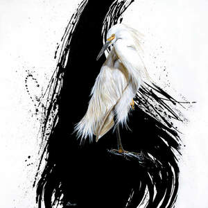 Egrets Canvas Art Prints