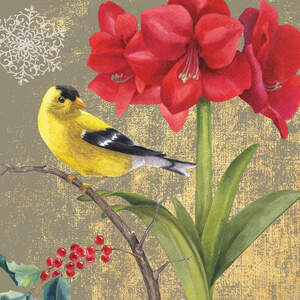 Finches Canvas Art Prints