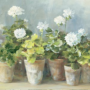 Geraniums Canvas Artwork