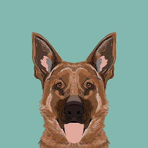 German Shepherds Canvas Art Prints