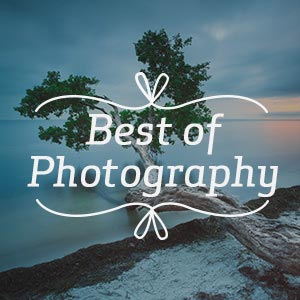 Best of Photography Art Prints