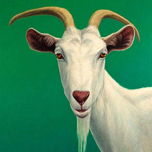 Goats Canvas Artwork