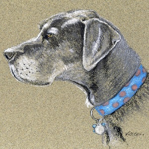 Great Danes Canvas Artwork