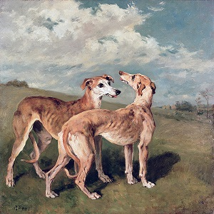 Greyhounds Canvas Prints