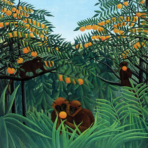 Henri Rousseau Art Prints