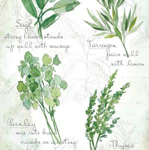 Herbs Canvas Art Prints