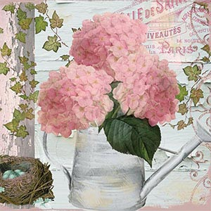 Hydrangeas Canvas Prints