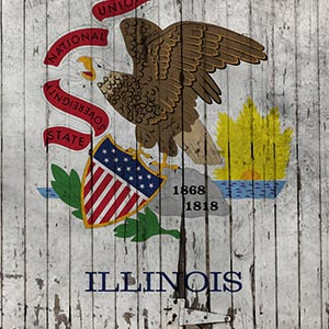 Illinois Canvas Prints