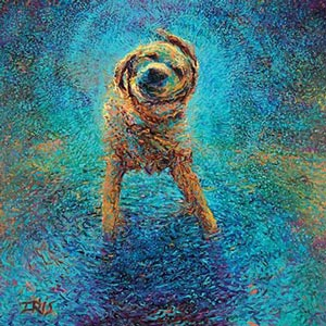 Best Selling Animal Art Canvas Artwork