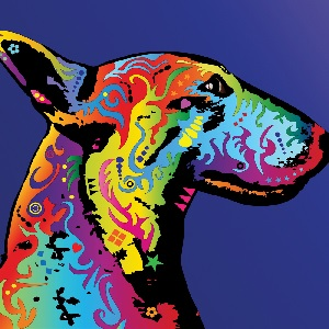 Bull Terriers Canvas Prints
