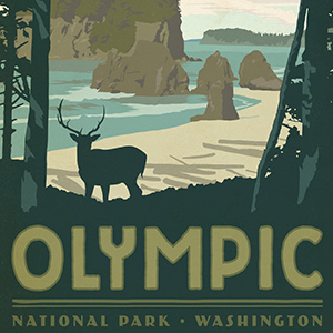 Olympic National Park Canvas Art
