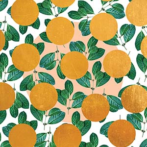 Oranges Canvas Prints