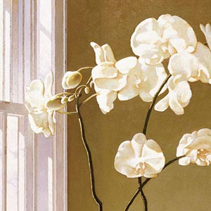 Orchids Canvas Art