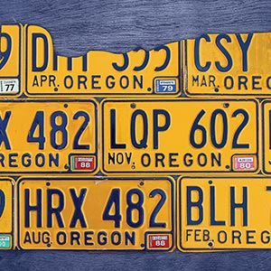 Oregon Canvas Prints