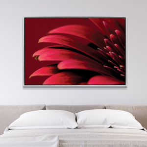Pantone Valiant Poppy Canvas Art