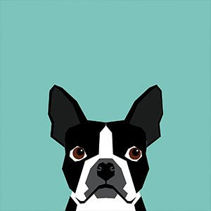 Pet Friendly Canvas Artwork