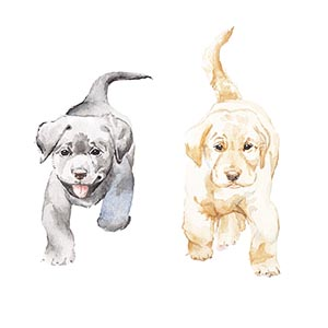 Puppies Canvas Artwork