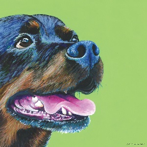 Rottweilers Canvas Art Prints