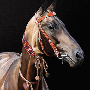 Sally Lancaster Canvas Art