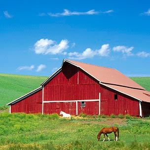 Farms Canvas Art Prints