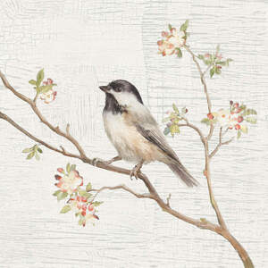 Sparrows Canvas Prints