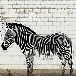 Stencil Animals Art Prints