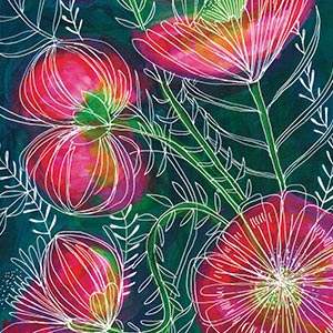 Sweet William Art Prints