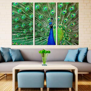 3 Piece Scenic Animals Canvas Prints