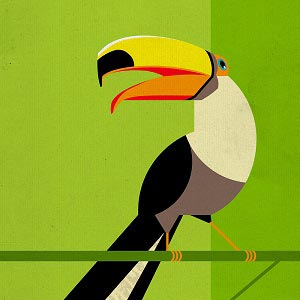 Toucans Canvas Art