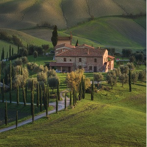 Tuscany Canvas Art Prints