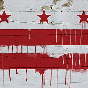 Washington DC Canvas Artwork