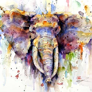 Wildlife Collection Canvas Art